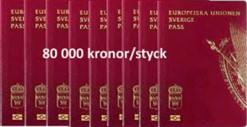 Svenska medborgarskap åt hela världen? Det har Löfven redan lagstiftat om.