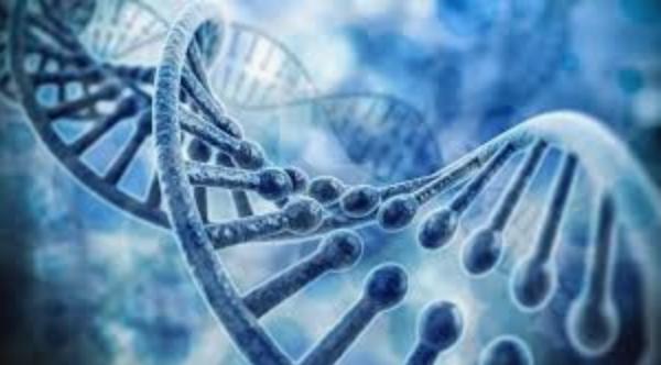 Alt+Delete: del 4. Genetiken: för somliga en Pandoras ask